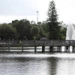 Gleeson Park Pond
